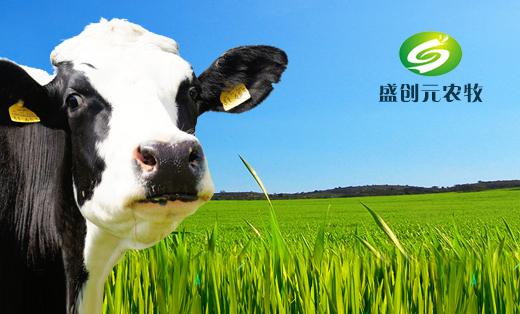 盛创元农牧科技有限公司