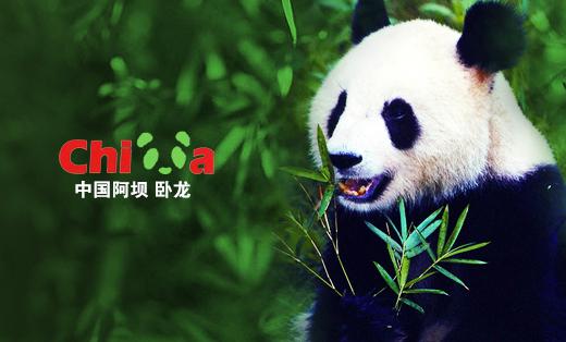 中国阿坝——卧龙自然保护区